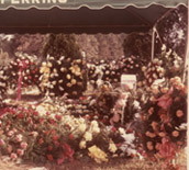 Tom Martins graveside Sept 30 1973